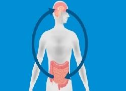 Hệ Thống Tiêu Hóa Và Bệnh Parkinson