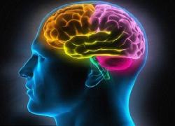 Chương trình sinh hoạt Câu lạc bộ người bệnh Parkinson
